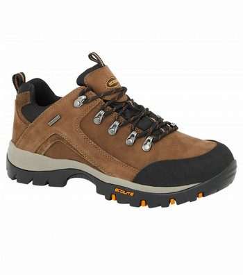 Apex Low Hiking Shoes
